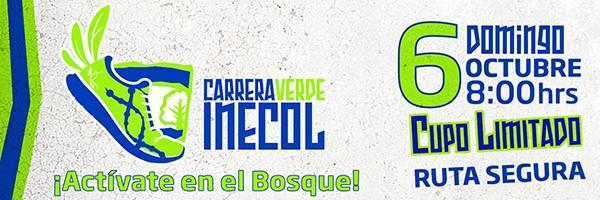 2013 INECOL